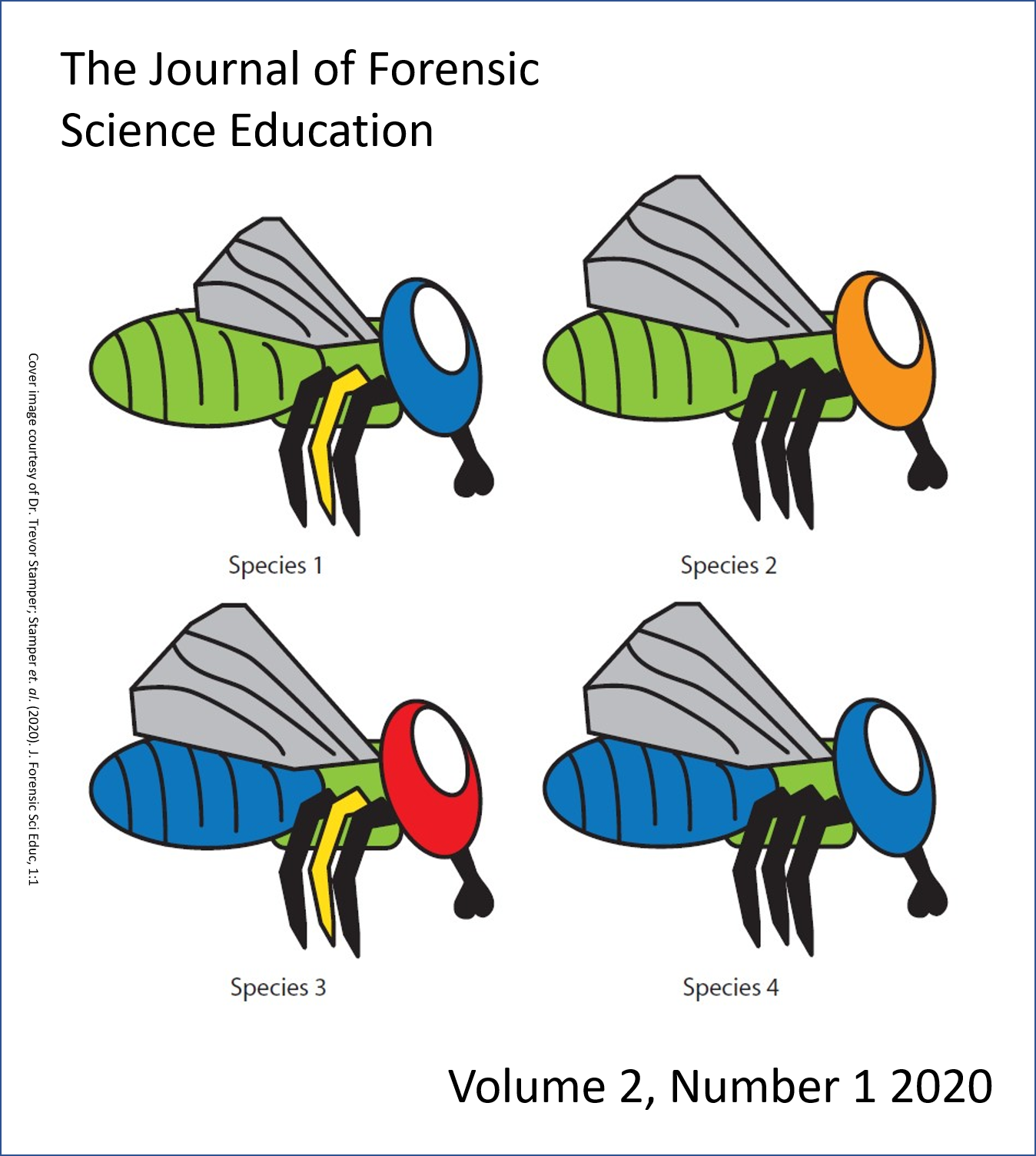 Illustration of four hand-drawn Calliphoridae flies, taken from Stamper 2020